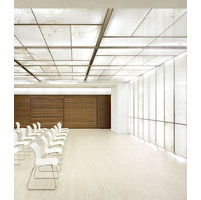 Decorative Ceilings image