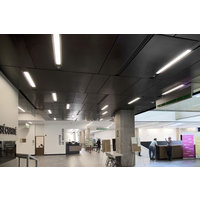 Acoustical Ceilings image