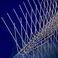 Stainless Steel Bird Spikes image