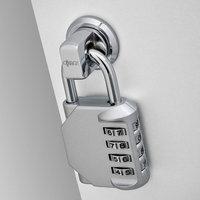 Hasp Lock image