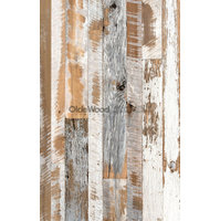 Distressed Collection - Creme image
