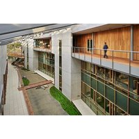 Timber Curtain Wall System image