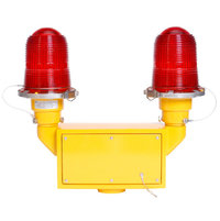 Double Obstruction Light with Edison Lamps image