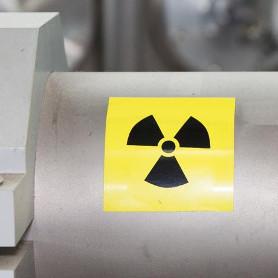 nuclear shielding