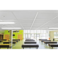 Suspended Ceiling Tile image