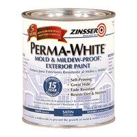 Exterior Paint image