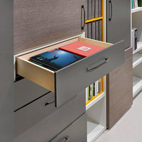 Concealed - Runner and Drawers image