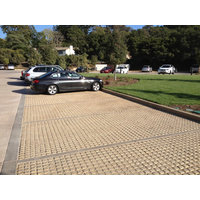 Drivable Grass® Permeable Pavement image