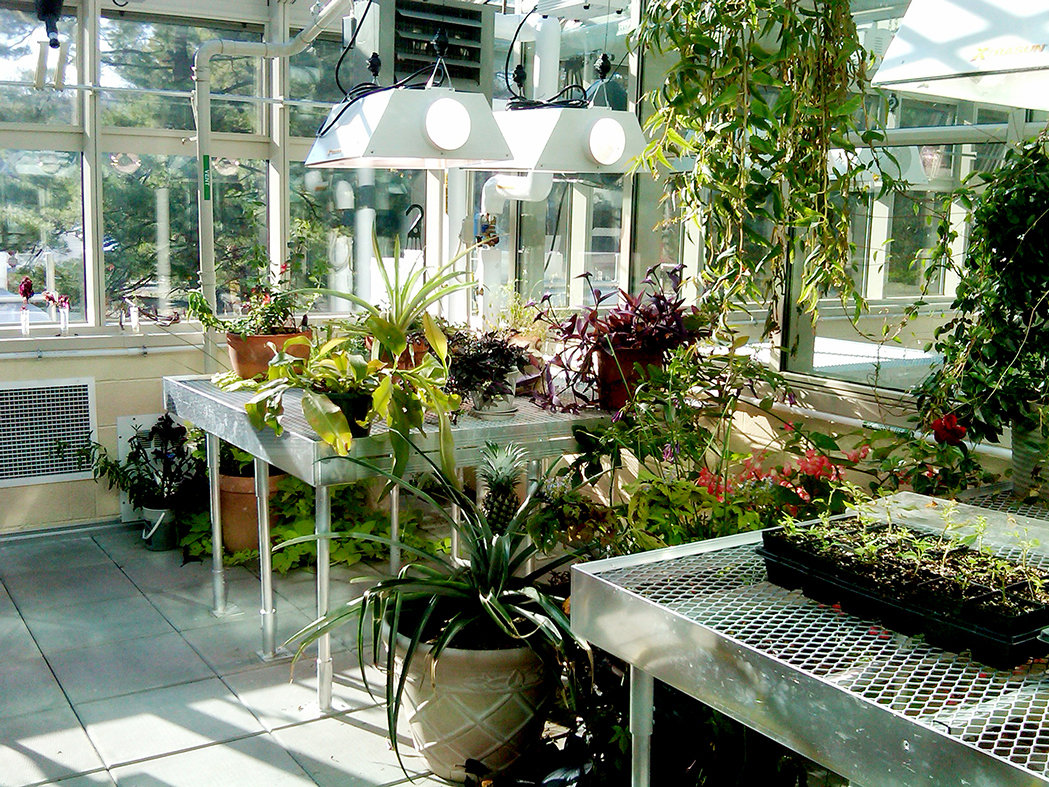Greenhouse Accessories