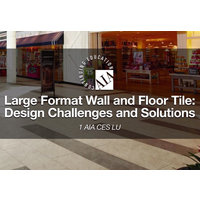 Large Format Wall and Floor Tile: Design Challenges and Solutions image