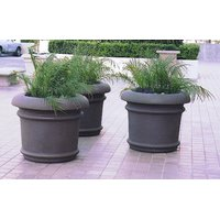 Californian Planters image