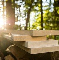 Timber Products Co. image | Hardwood Lumber