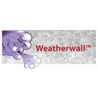 Weatherwall™ System image