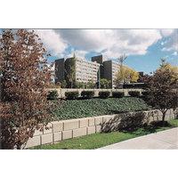 Retaining Walls image