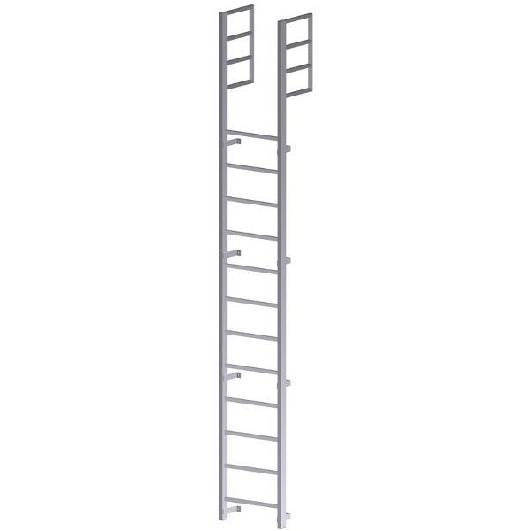 Roof Access Vertical Ladder
