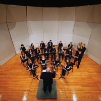 Classic Acoustical Shells image
