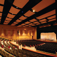 Performance Space Acoustical Treatments image