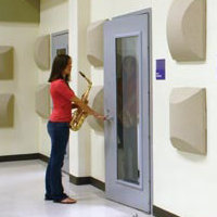 Pre-Engineered Acoustical Doors image